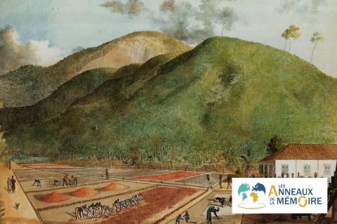UNE HISTOIRE DES ESCLAVAGES – Nantes et l'île de la Réunion