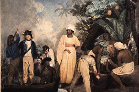 L'économie de plantation au XVIIIème siècle