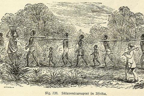 Les débats autour de la traite et de l'esclavage colonial dans les empires européens (XVIIIe-XIXe siècles)