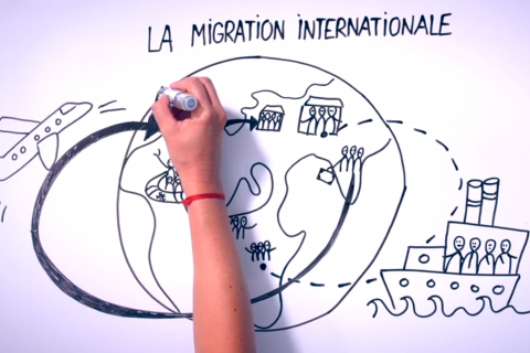 Les catégories de migrations